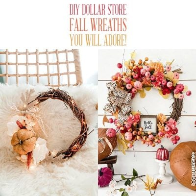 DIY Dollar Store Fall Wreaths You Will Adore!