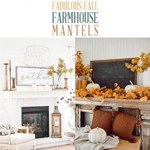 These Fabulous Farmhouse Fall Mantels will totally inspire you to create one of your very own! Tons of Ideas and Inspiration await you.