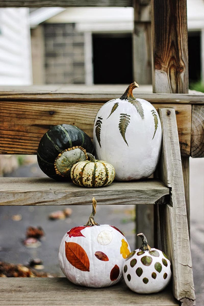 These Farmhouse Style No Carve Pumpkins for Fall will add so much charm and fun to your home decor. They are all quick and easy to make and will make you smile all Season long!