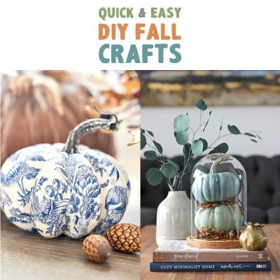 Quick and Easy DIY Fall Crafts