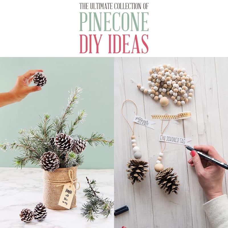 The Ultimate Collection Of Farmhouse Pinecone Diy Ideas The Cottage Market