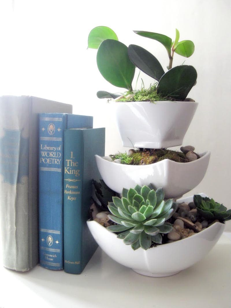These DIY Dollar Store Planter Hacks are really amazing and I think that you should try some of the ones that catch your eye.  No one will ever know they are from the Dollar Store!