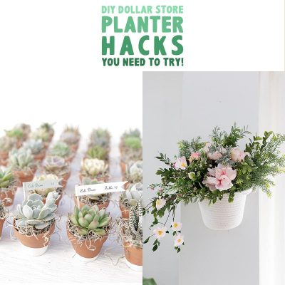 DIY Dollar Store Planter Hacks