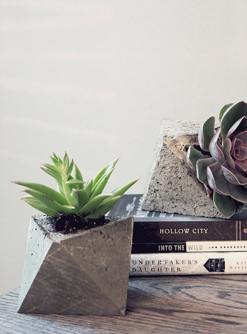These fabulous DIY Concrete Planters have tons of Modern Farmhouse Style. I am sure Joanna Gaines herself would use any one of them in her decor projects!