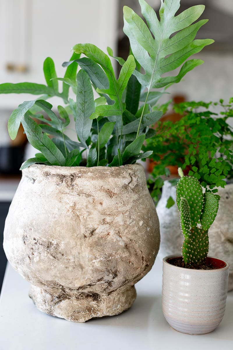These DIY Farmhouse Flower Pots are so absolutely gorgeous and have so much Farmhouse Style from Modern to Traditional… I am sure that Joanna Gaines herself would decorate with each and every one of them.