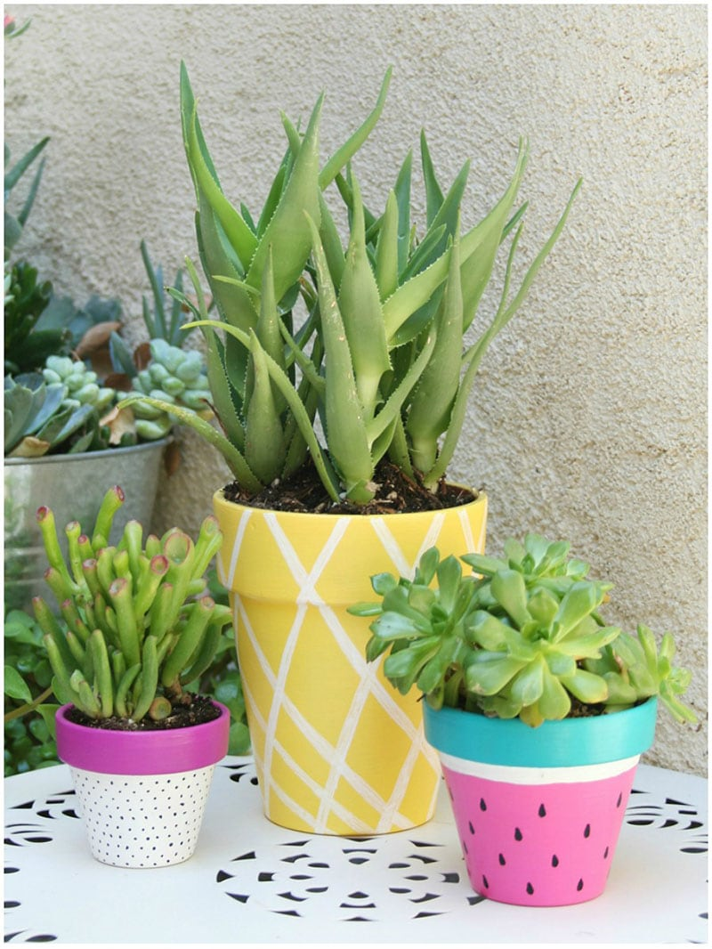 These Dollar Store Summer Decor DIYS are guaranteed to give your space a little refresh and each project is extremely budget friendly.