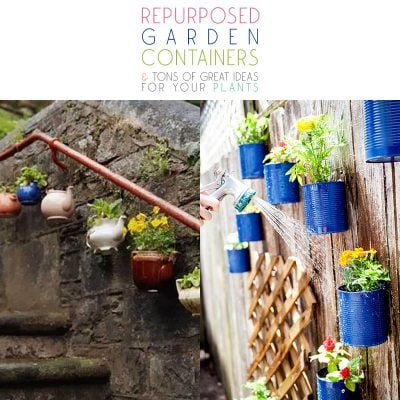 Repurposed Garden Containers and Tons of Great ideas for your plants