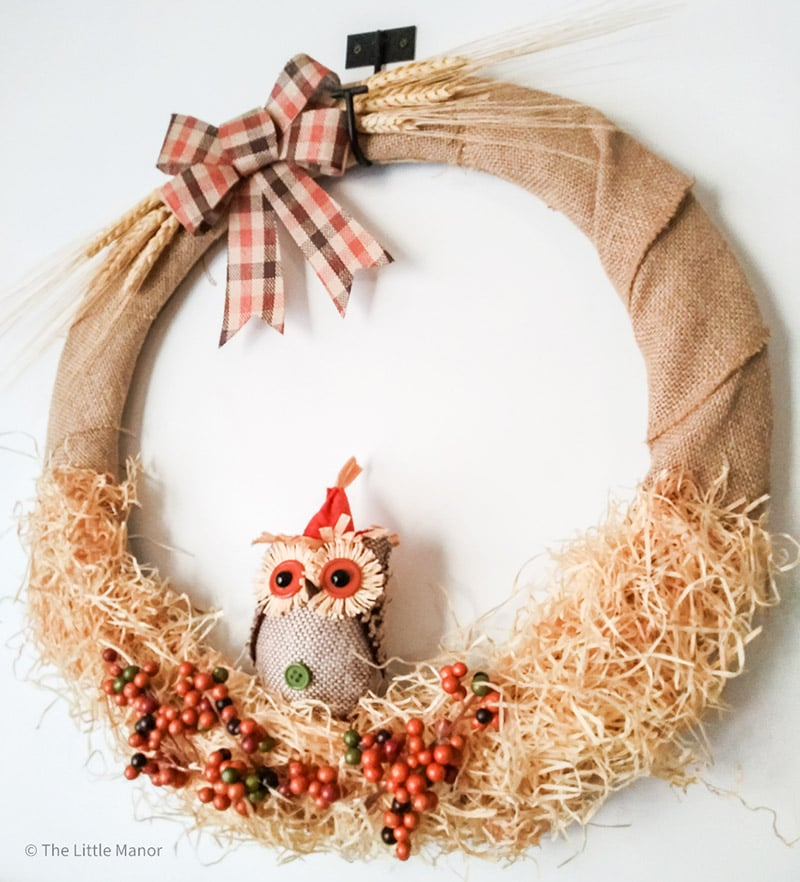Fabulous DIY Dollar Store Fall Wreaths are just what many of you have been looking for! These Fall Wreaths are extremely Budget Friendly and we can all use a bit of that right now!