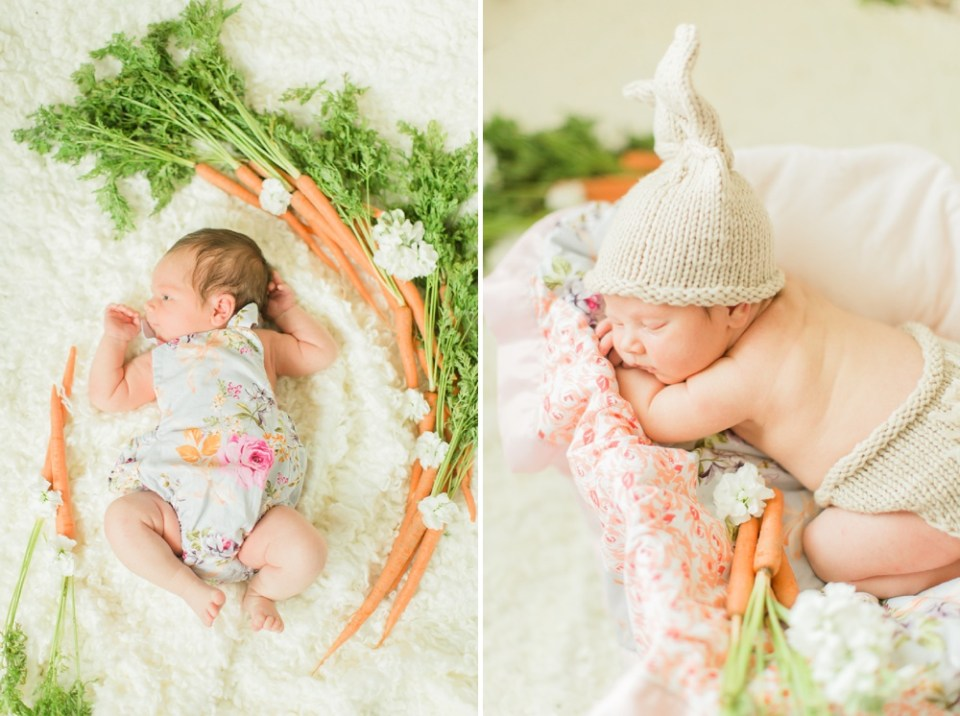 Houston Bunny Themed Newborn Photos with Fresh Carrots