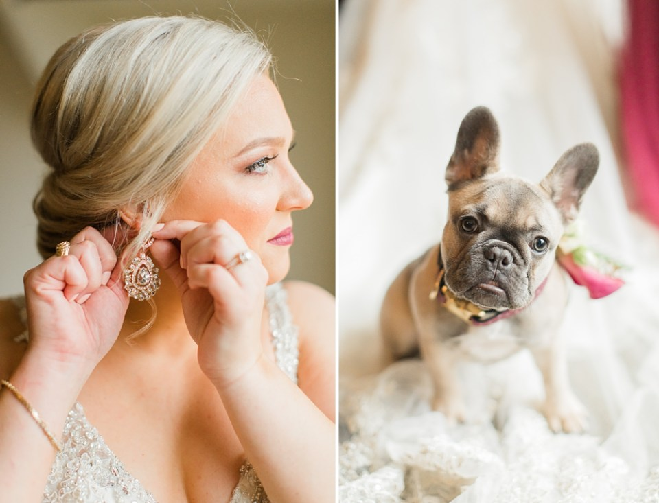 bride and french bull dog
