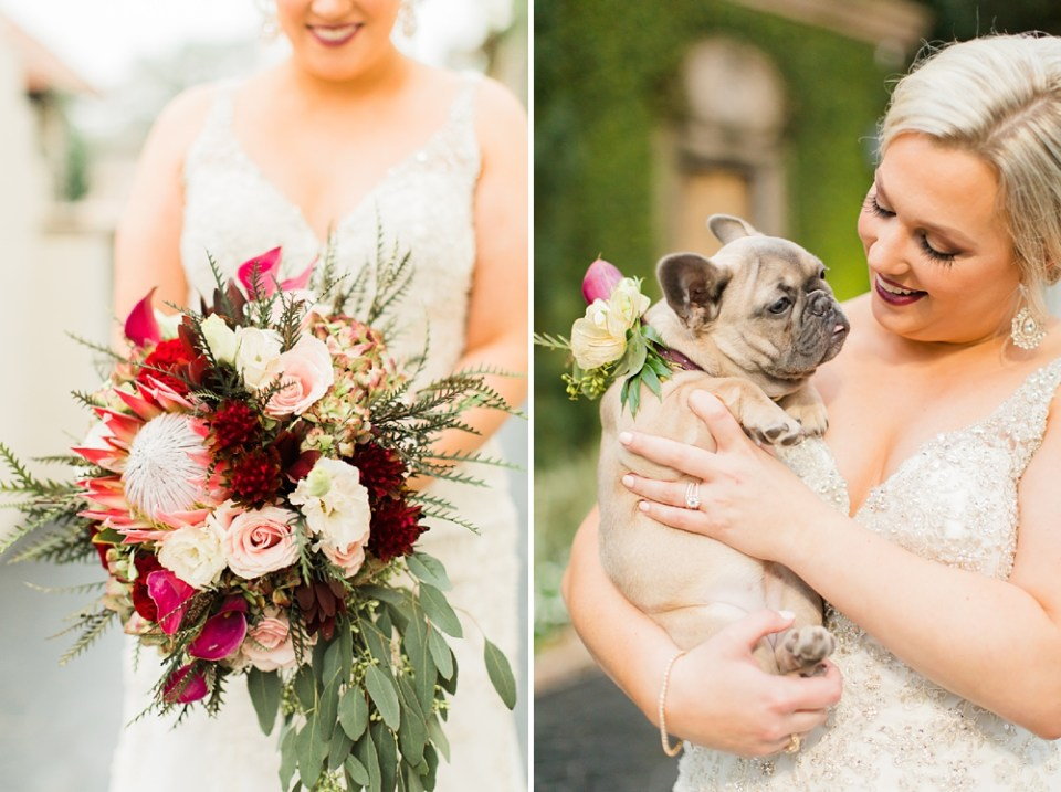 french bull dog and bride