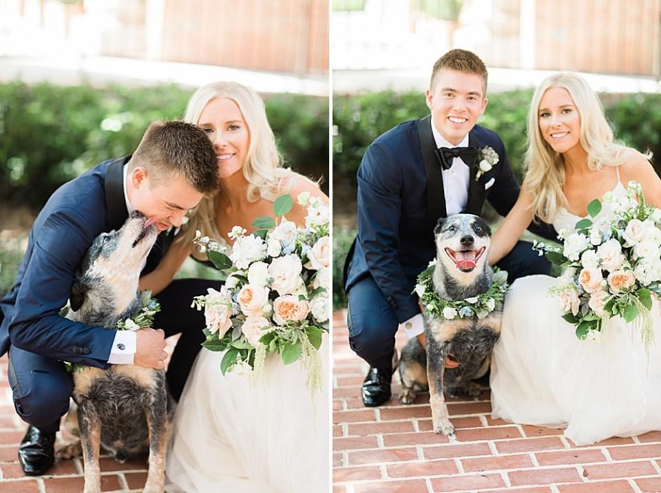 bride and groom wedding puppy