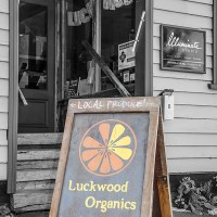 Interview * Sharon & Ken * Luckwood Organics