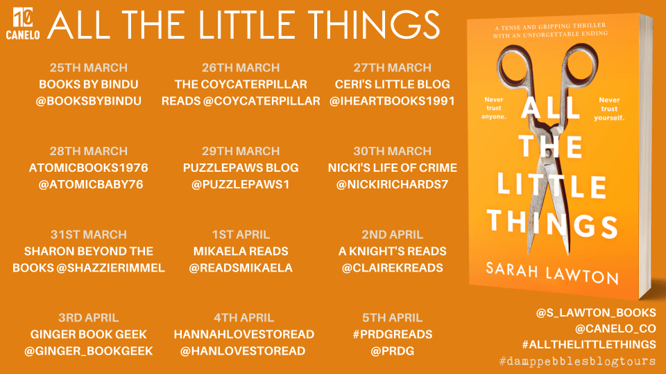 All the Little Things banner V3 - All The Little Things by Sarah Lawton | Blog Tour Review
