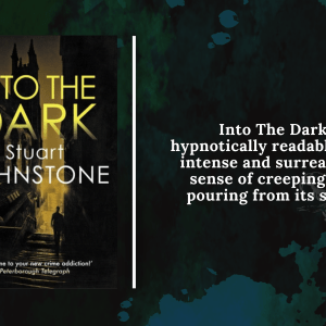 Add a subheading 26 - Review:  Into The Dark by Stuart Johnstone
