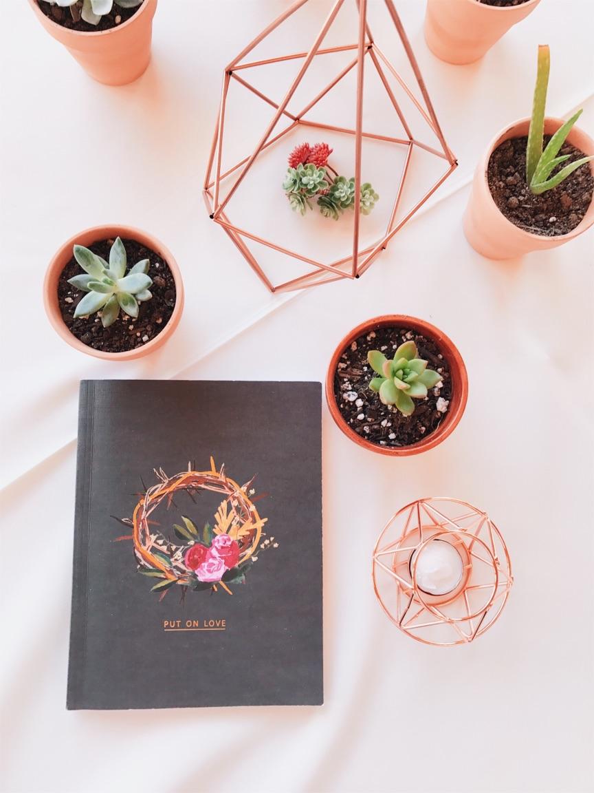 Retreats + Roots The Cozie