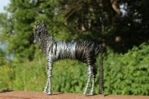 Pinto Horse (And Dog) 053