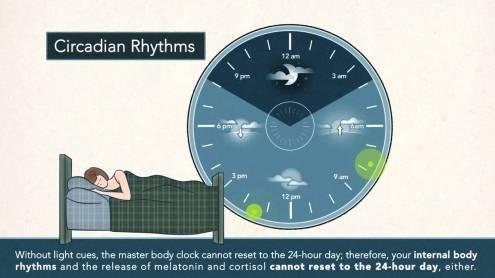 Non-24-Hour Sleep-Wake Rhythm.jpg