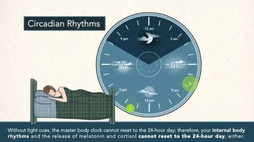 Non-24-Hour Sleep-Wake Rhythm.jpg