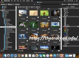 ACDSee Photo Studio Professional 2020 Crack