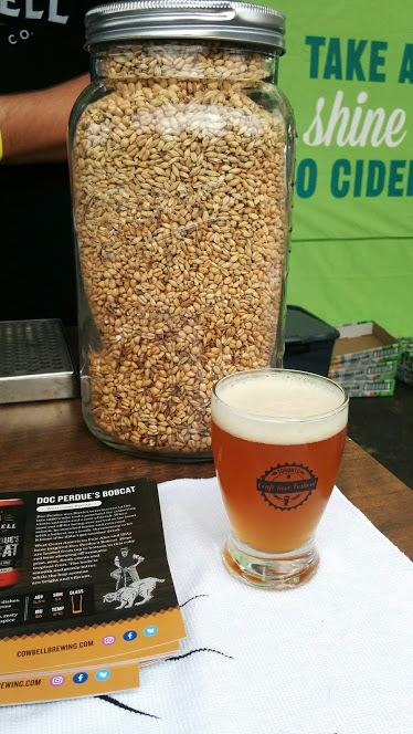 The 2017 Toronto Craft Beer Festival was held in downtown Toronto at the end of June. Here, the Craft Beer Diaries offer their recap of the event.
