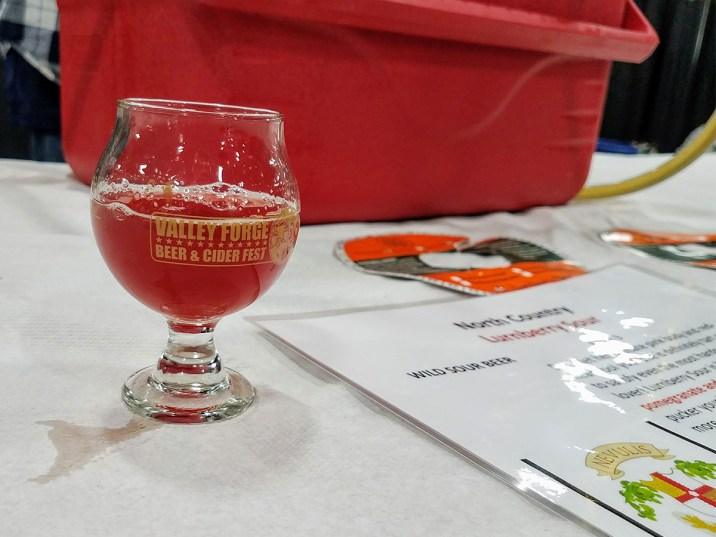 Valley Forge Beer and Cider Festival 20171104_182601 North Country Lurnberry Sour
