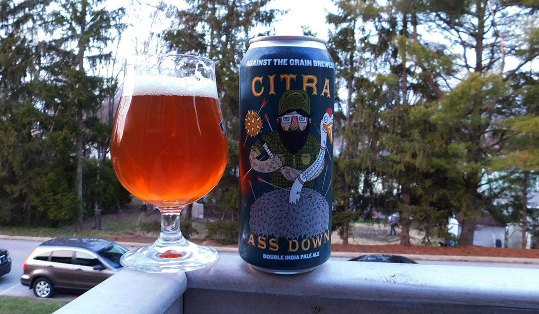 Review: Citra Ass Down by Against the Grain Brewery