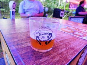 philadelphia-zoo-summer-ale-festival_20180623-195742-twin-lakes-greenville-pale-ale