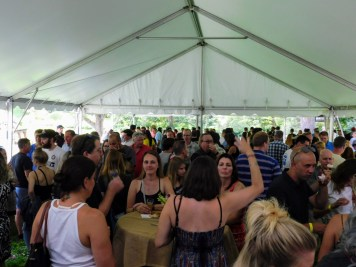 Fonthill Castle Beer Festival 2018 066 (Large)