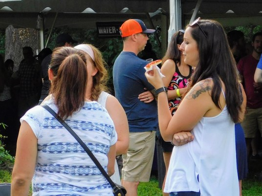 Fonthill Castle Beer Festival 2018 134 (Large)