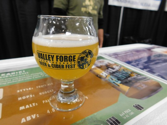 Valley-Forge-Craft-Beer-Fest-2018_120118-131957