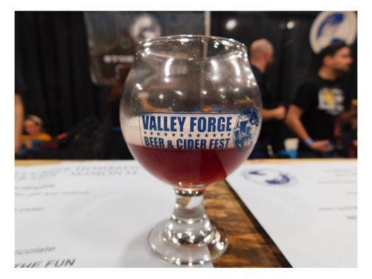 Valley-Forge-Craft-Beer-Fest-2018_120118-165021 Stoneybrook Ginger Headed Hipster