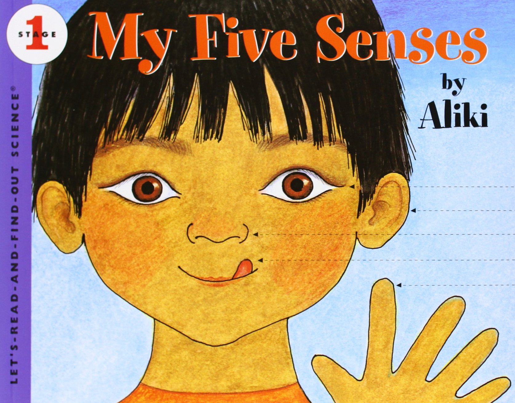Five Sense Books For Kids