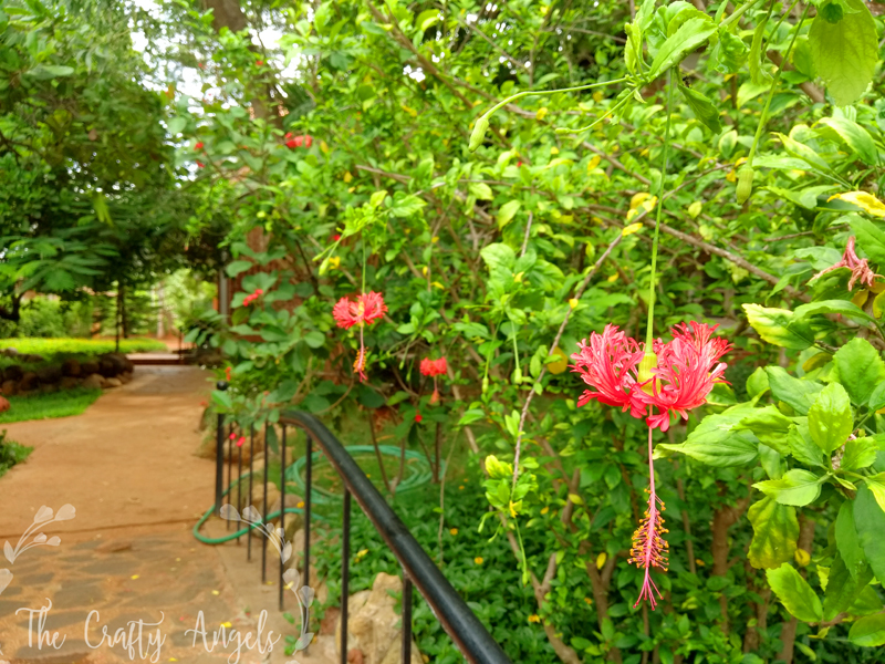 pondiville review, top places to stay in pondicherry, forest retreat pondicherry, Places to visit in Pondicherry with kids, pondicherry places to visit, places to visit in pondicherry, pondicherry review, best hotel to stay in pondicherry