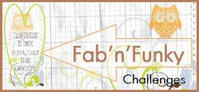 Fab N Funky Blog