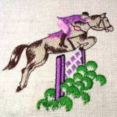 10. Notions of Brechin horse jumping embroidery