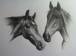 Tims Canvas horses