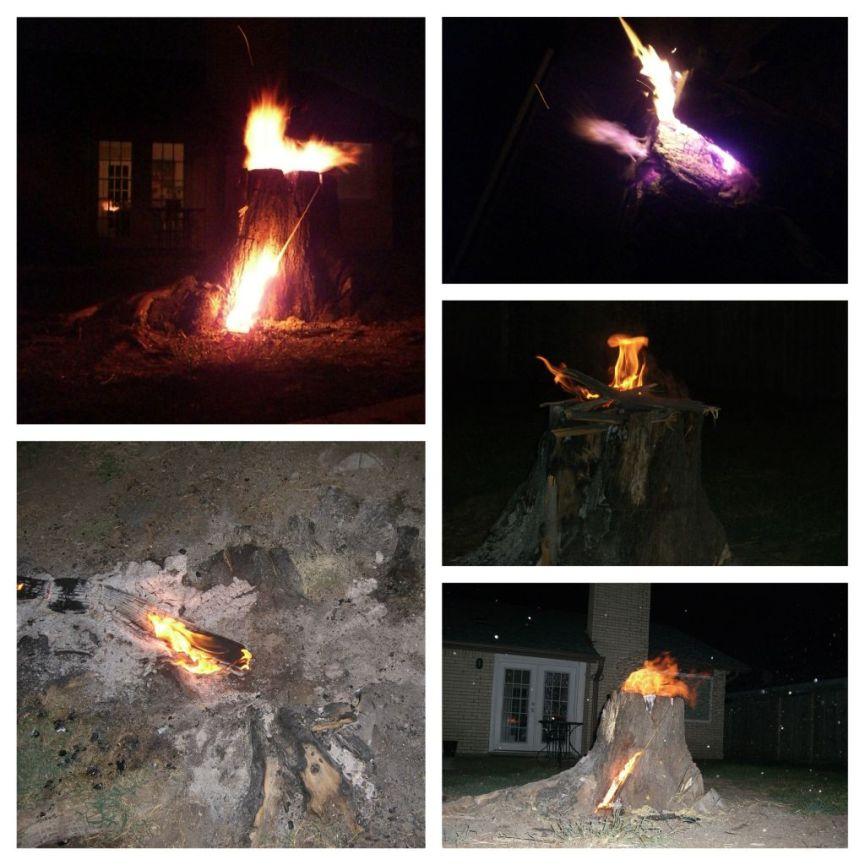 burning the tree stump