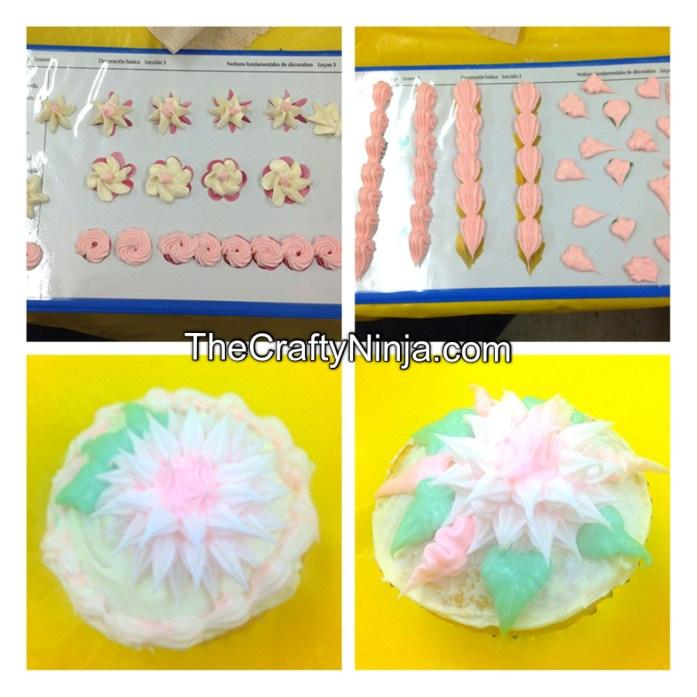 wilton cake decorating 2