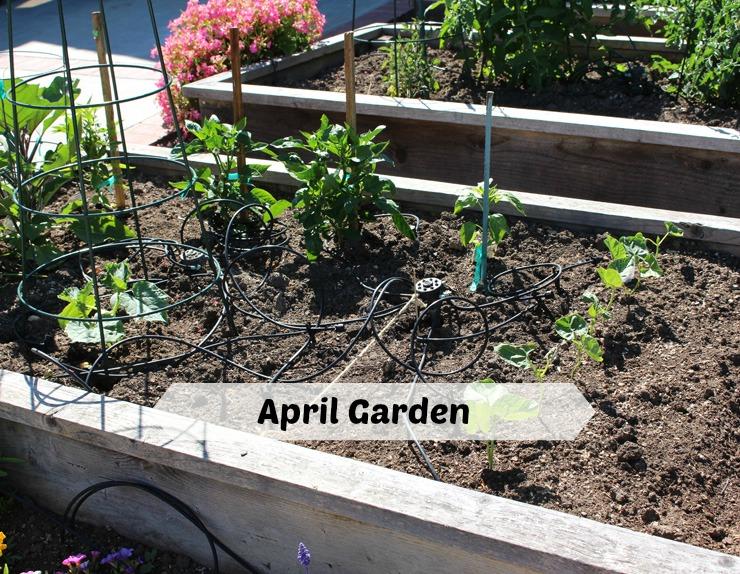 garden april a