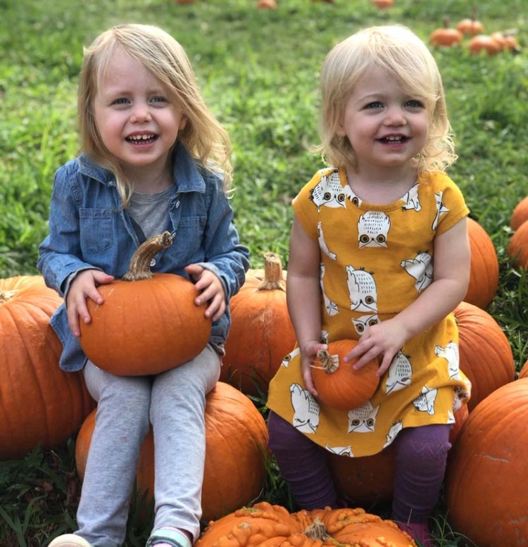 November update at The Crafty Quilter.  These two pumpkins are the cutest of them all!