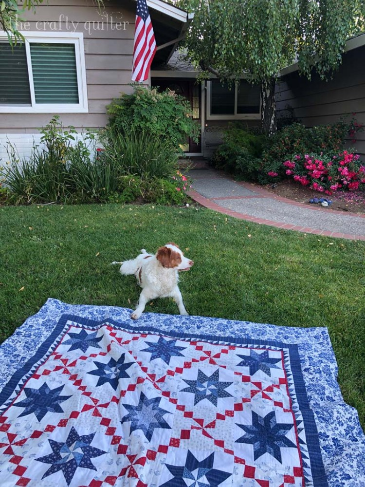 Oh My Stars quilt made by Julie Cefalu.  Original pattern by Alex Anderson for American Patchwork & Quilting.