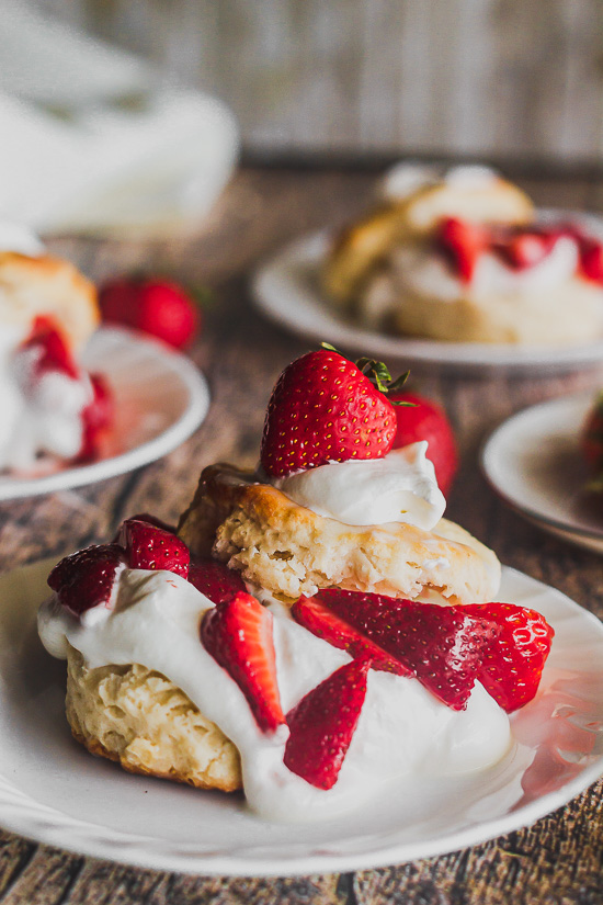 This image has an empty alt attribute; its file name is strawberry-shortcake-straight-on-3-1.jpg