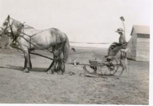 Bess_ShawPlace_SamAndBuster_MowHay_1925