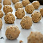 Peanut Butter and Coconut Protein Bites