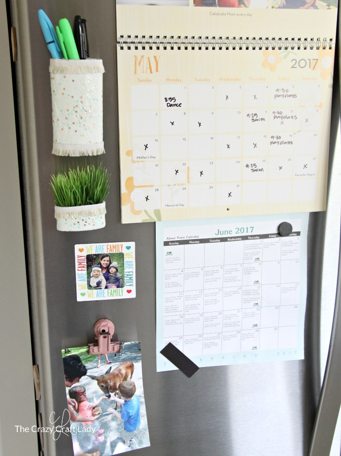 Organized Fridge Command Center