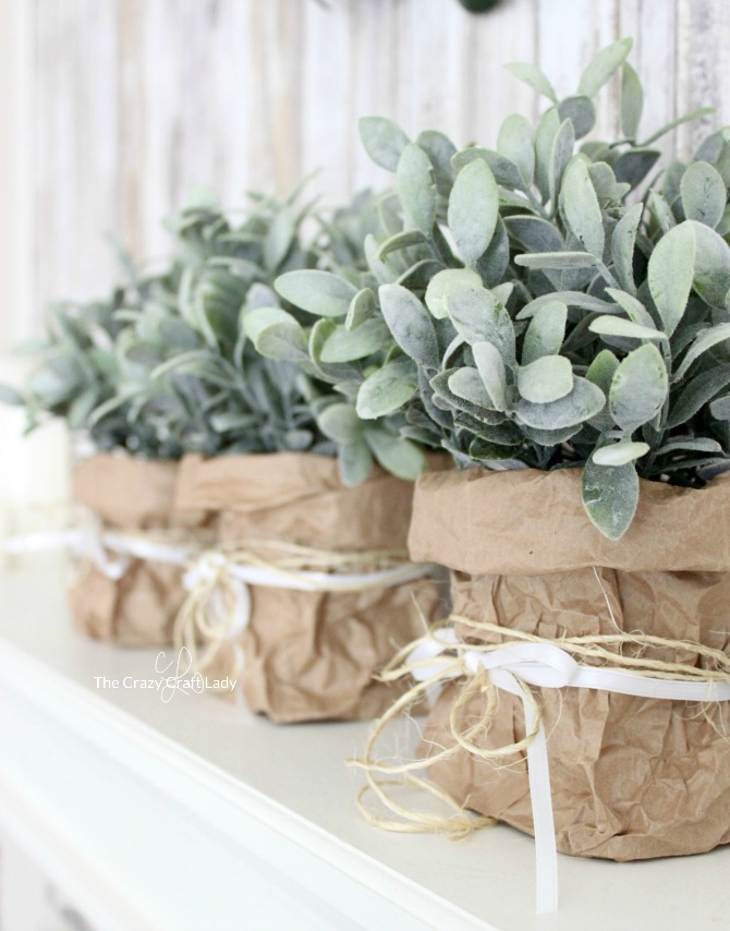 Display indoor greenery in a brown bag paper vase. Make this farmhouse style plant holder from just a brown paper lunch bag and ribbon! This is such a thrifty and green way to display indoor plants.