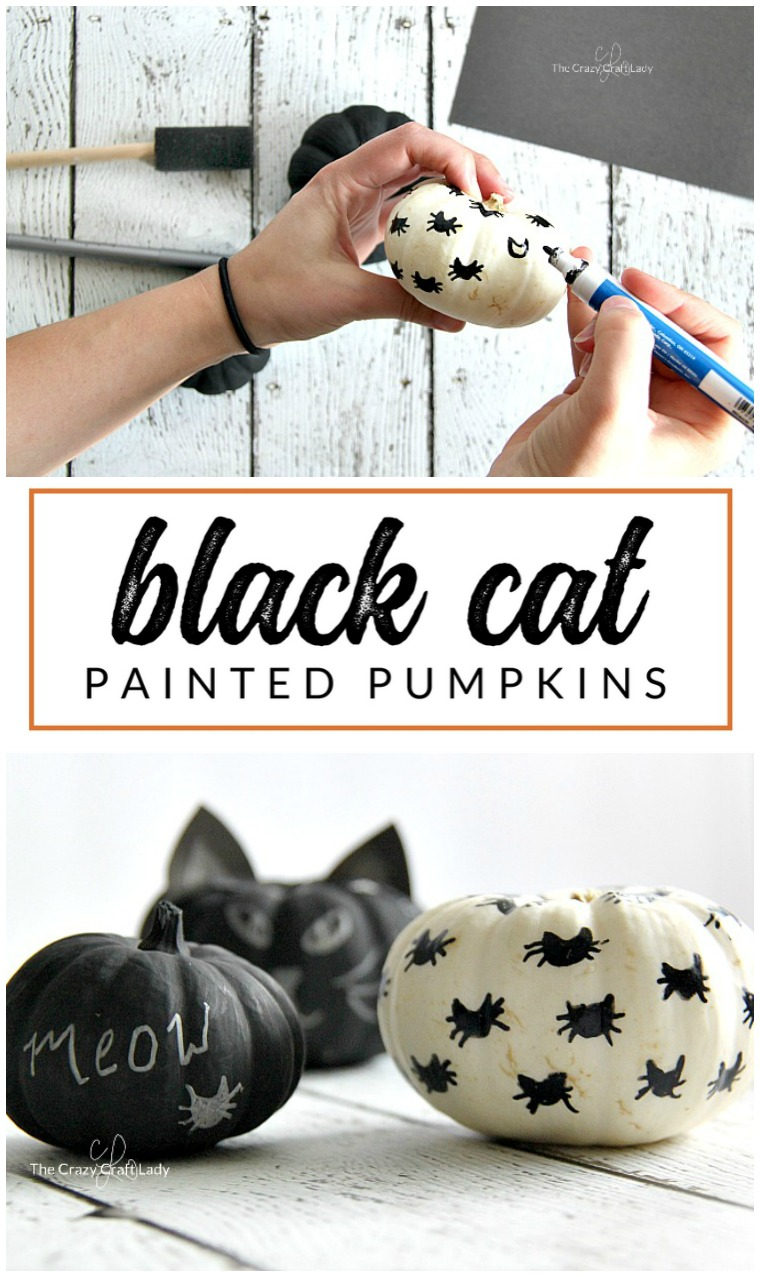 This Halloween craft is just for cat lovers! These black cat mini pumpkins are the perfect simple pumpkin craft for anyone who loves cats. Learn how to make no carve cat pumpkins with just paint.