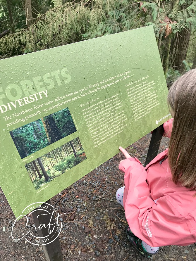 Learning about Forest Growth at Snoqualmie Falls Trail