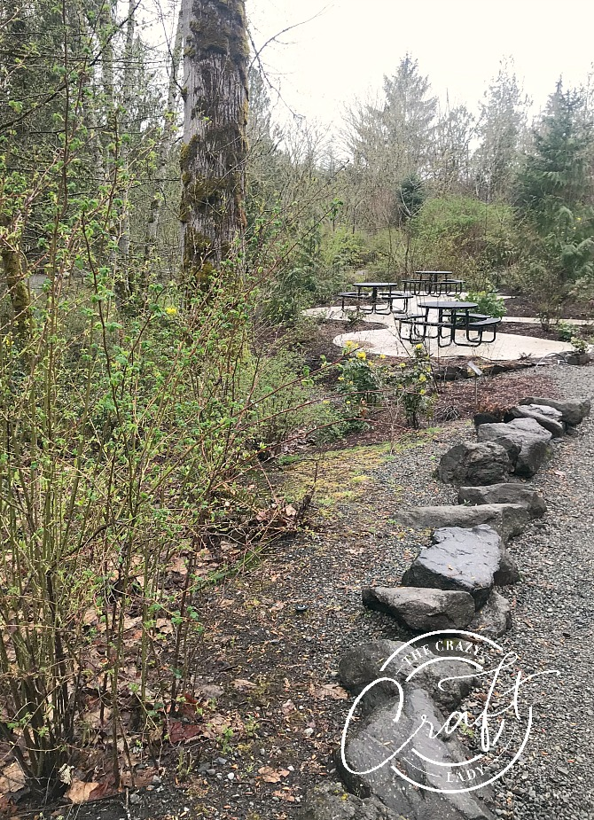 Picnic Area at the bottom of Snoqualmie Falls trail